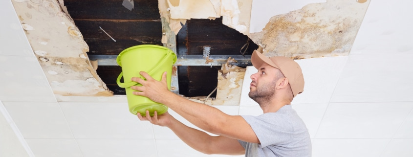 Hire Certified Professional for water damage in st louis