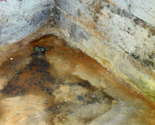 pride cleaning and restoration mold damage in basement st louis