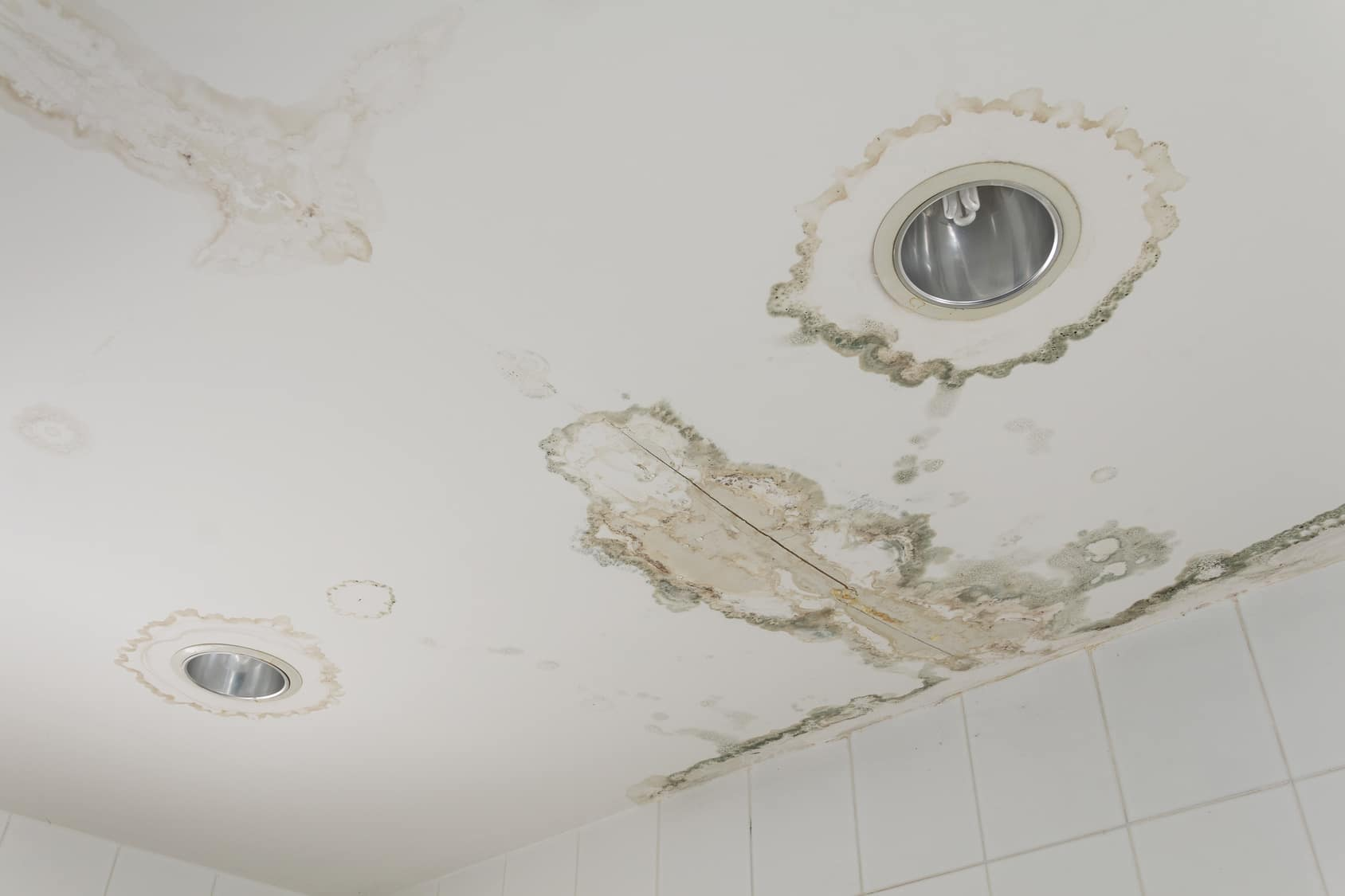 Should I be concerned about mold