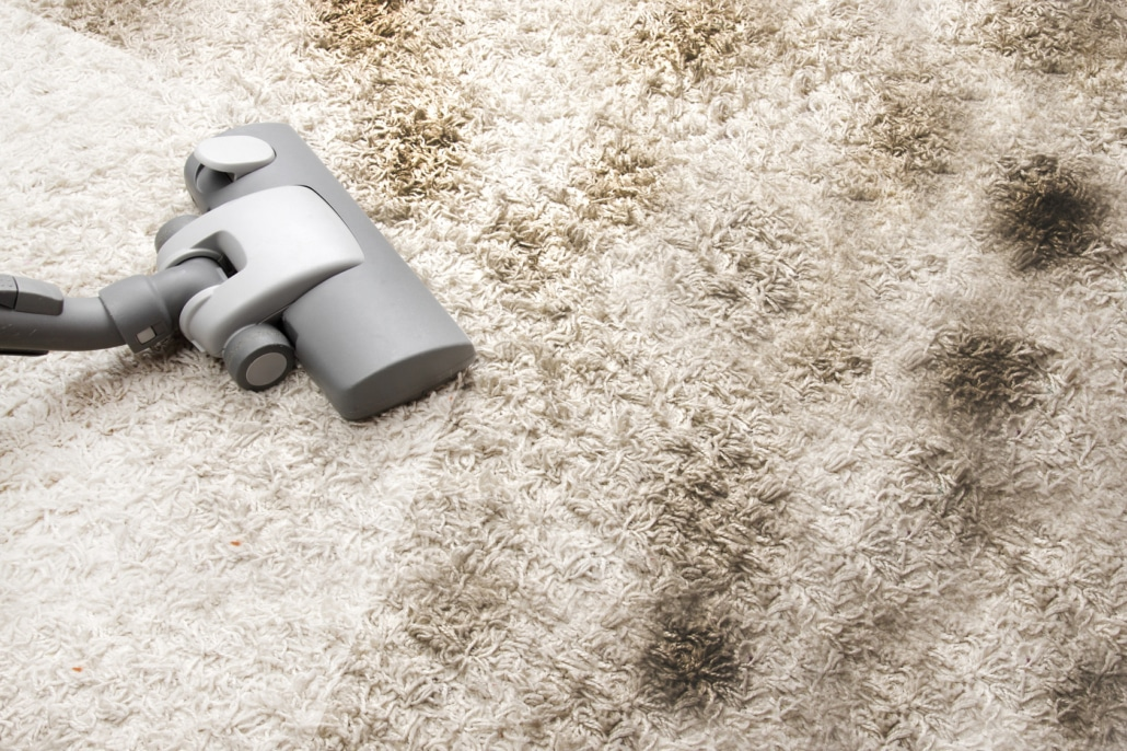 Professional Carpet Cleaning Vs Do It Yourself