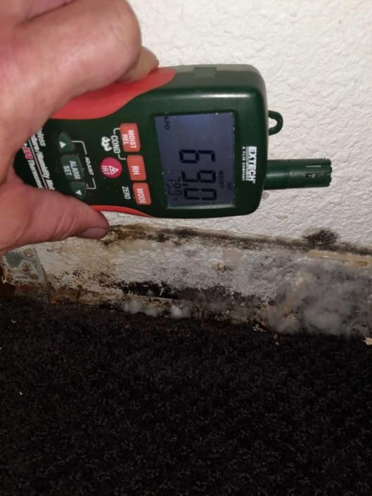 st louis mold damage restoration company