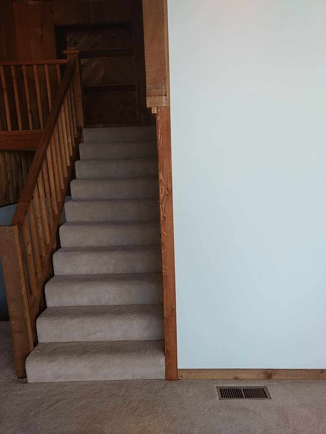 st louis mold inspection cost
