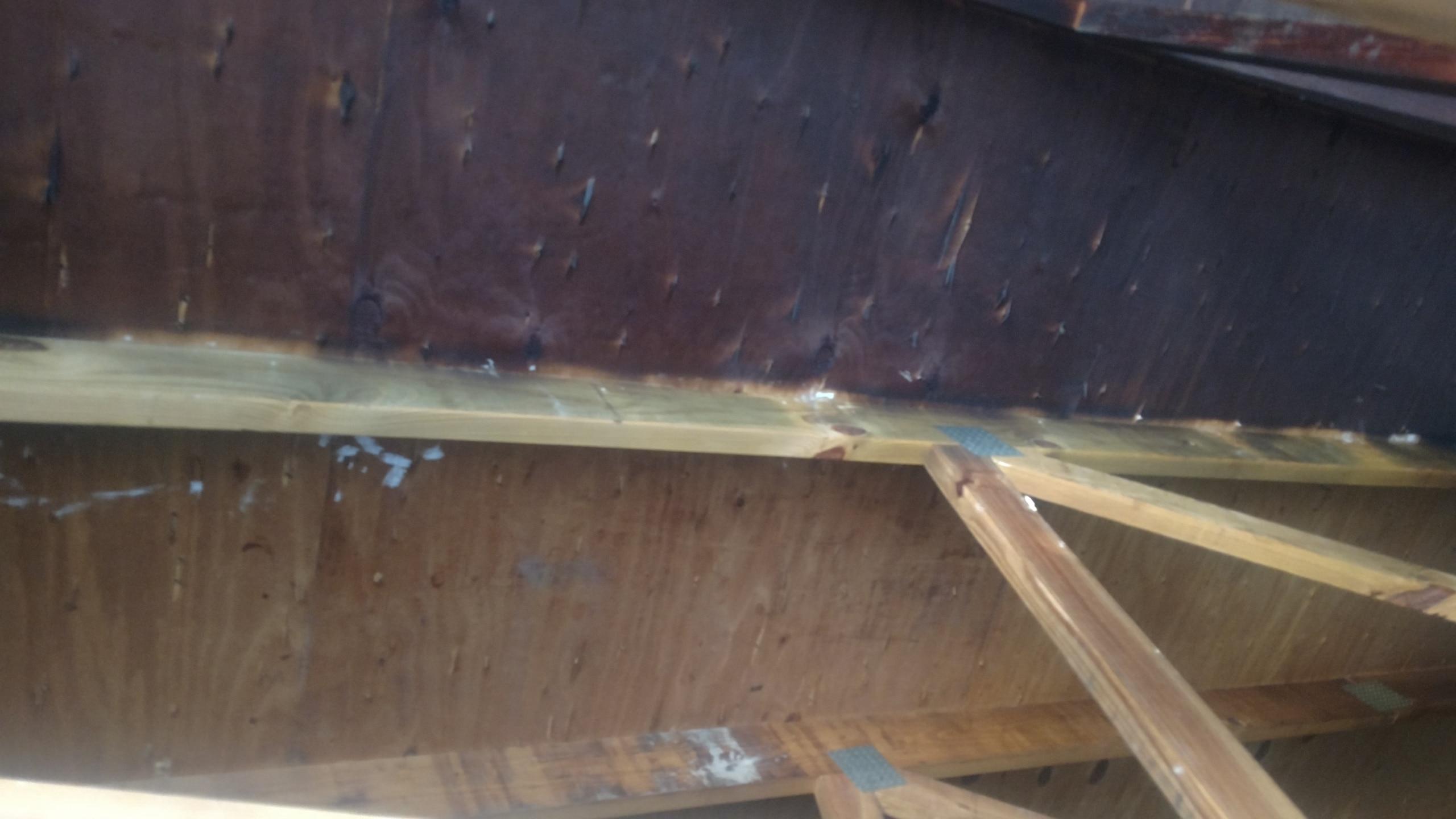 st louis water restoration contractors