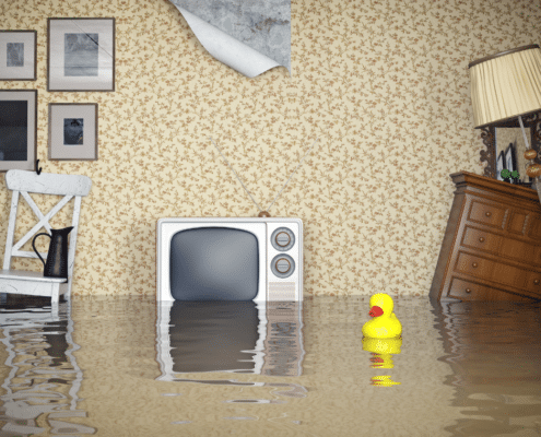 Prevent Flooded Basement and Water Damage