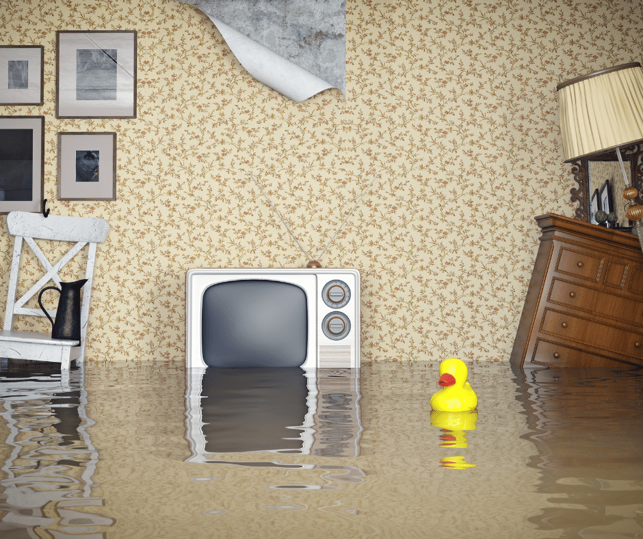 How To Prevent Flooding And Water Damage In Your Basement